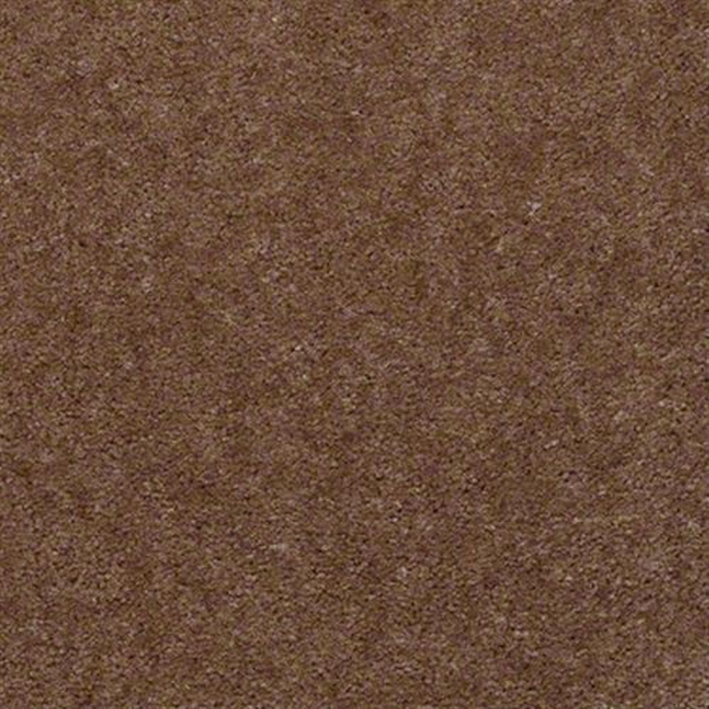 Aspen Classic 12 Ft. 100% Continuous Filament FHA Nylon 25 Oz. Carpet - Auburn